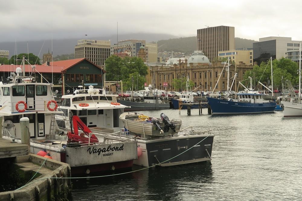 Sur les routes de Tasmanie : Hobart et les parcs de l�ouest