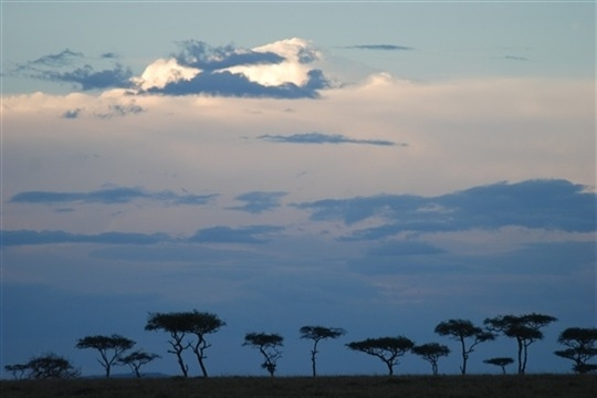 Day 3 - Welcome to the Maasai Mara National reserve !