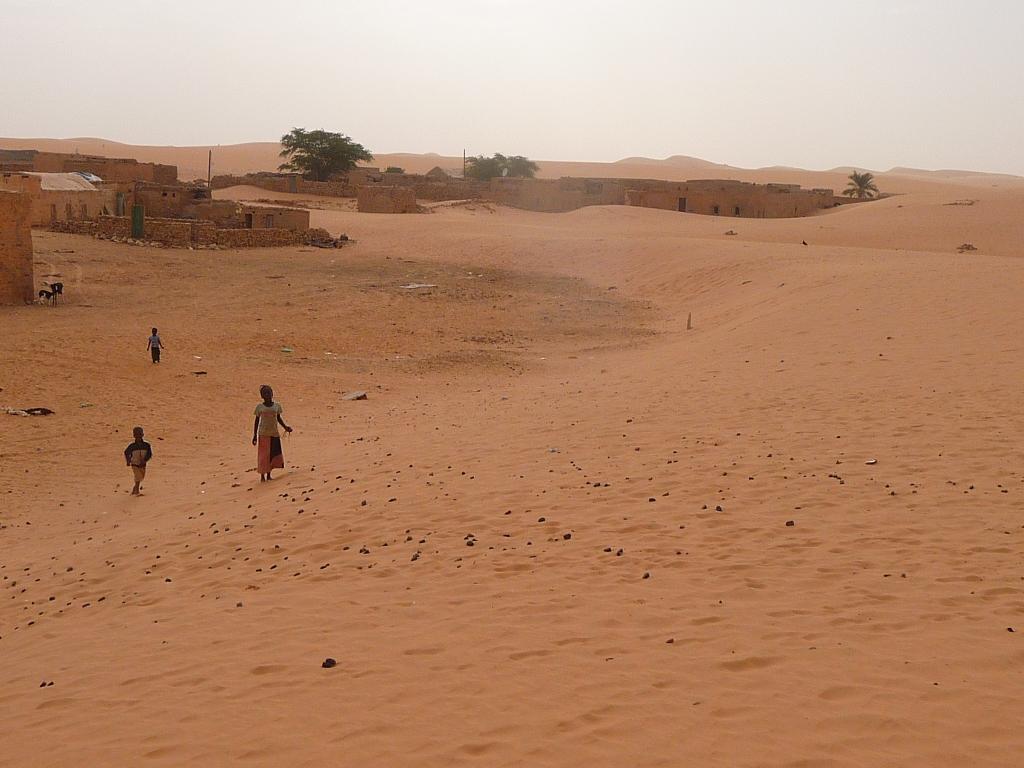 des oasis dans le desert