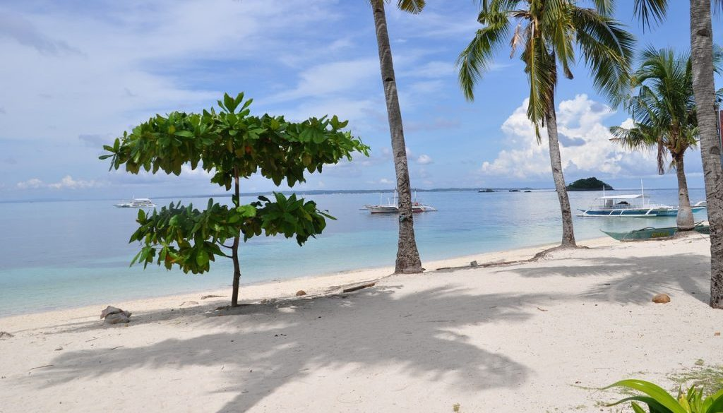 Partir aux Philippines en janvier