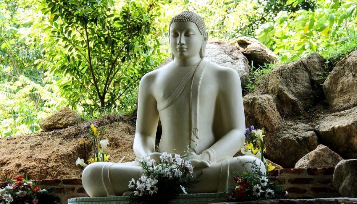 Partir au Sri Lanka en janvier