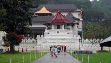 Partir au Sri Lanka en mars