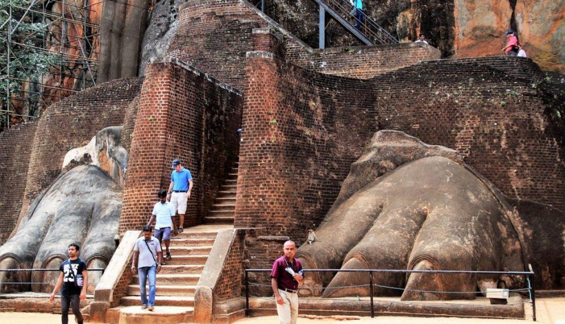 Partir au Sri Lanka en novembre