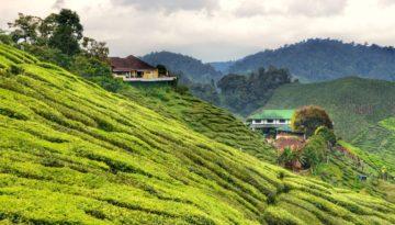 Partir en Malaisie en mai