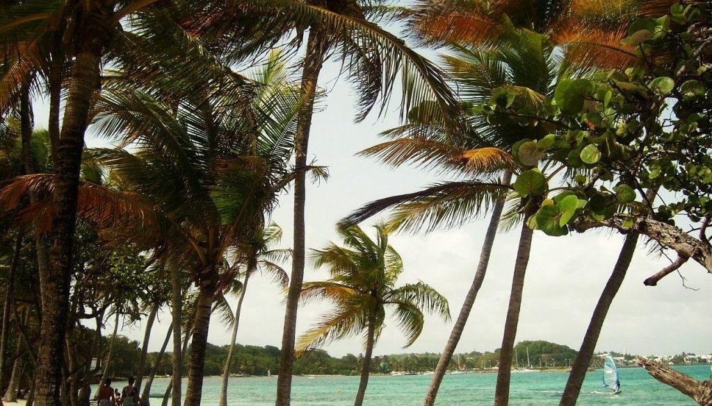 partir en Guadeloupe en juillet