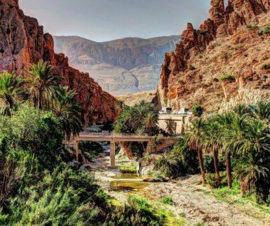 Partir en Algérie en avril