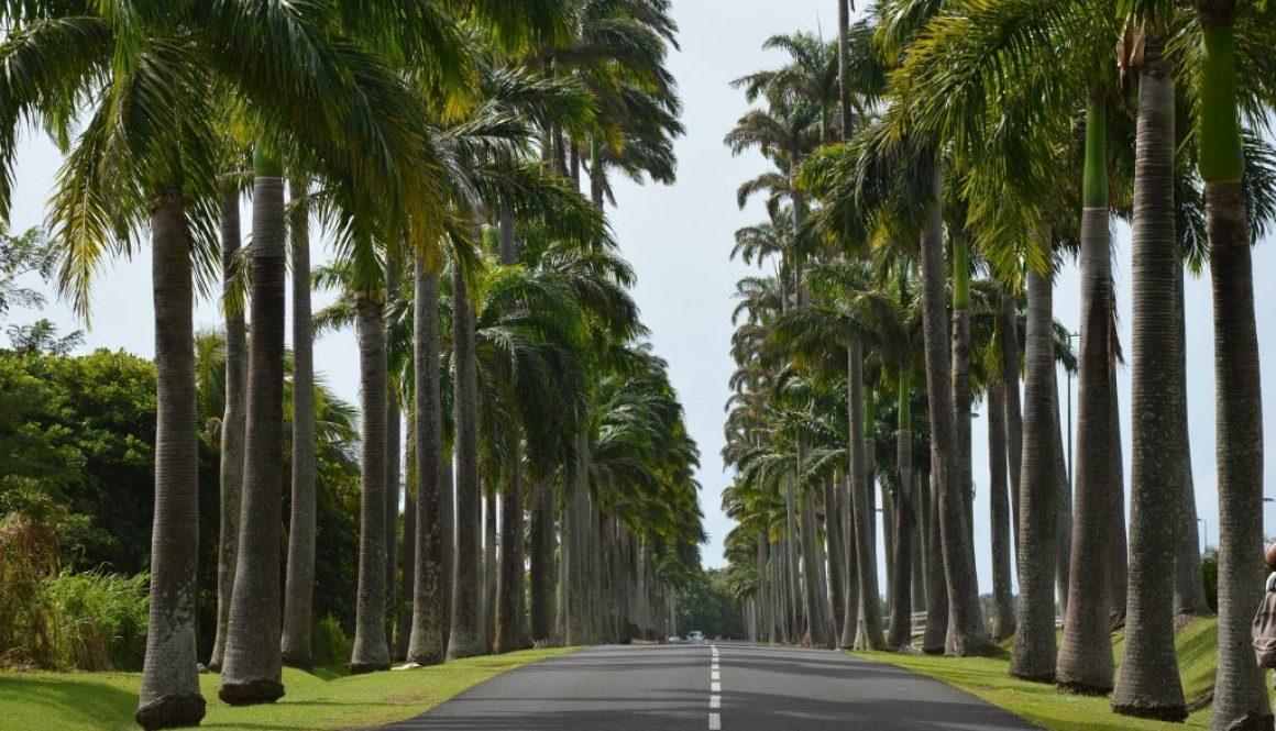 Partir en Guadeloupe en mars