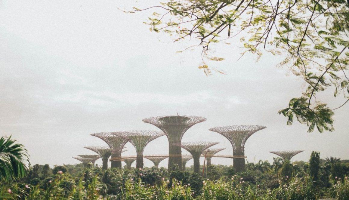 Partir à Singapour en février
