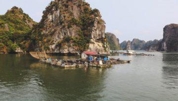 Partir au Vietnam en octobre
