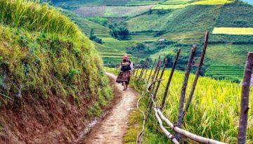 Partir au Laos en février