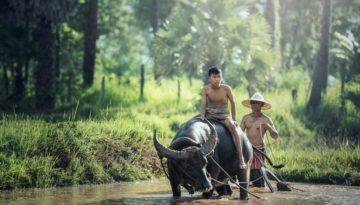Partir en Vacances au Birmanie (Myanmar ) en octobre